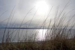 Whidbey Island-9