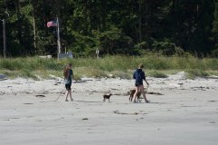 Crescent Beach-8