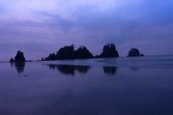 Shi Shi Beach-5